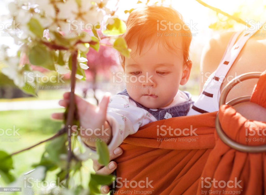 Unrecognizable young mother with her infant baby in sling stock photo