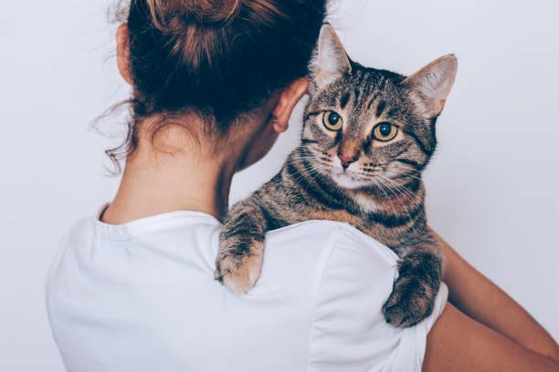 méconnaissable jeune femme tenant son chat rayé - femme seule s'enlacer photos et images de collection