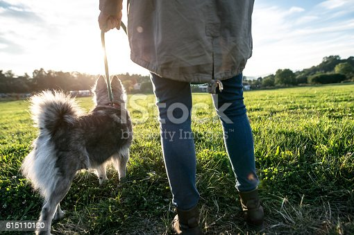 istock Unrecognizable young woman with dog in green sunny nature 615110120