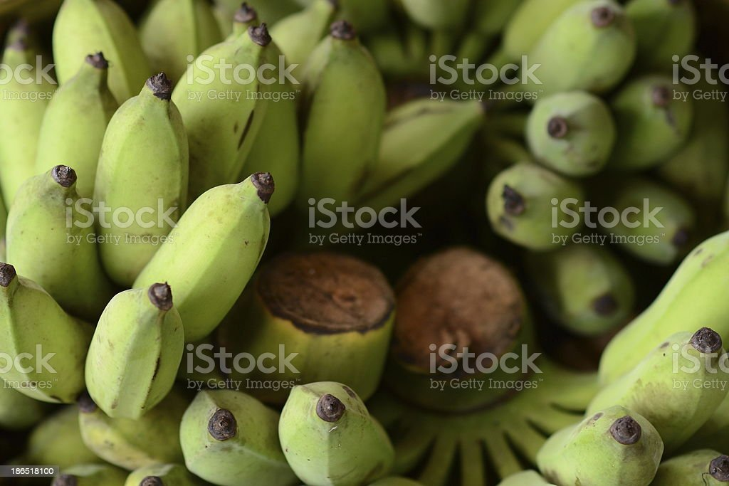 unripe thai banana royalty-free stock photo