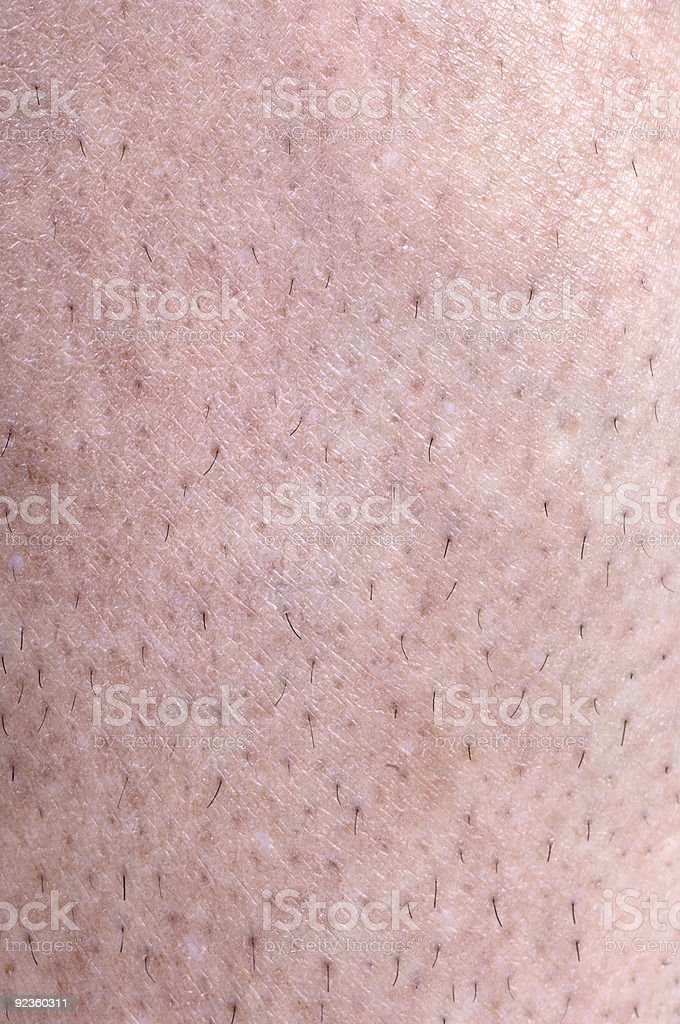 Unshaved Leg Hair 3 royalty-free stock photo