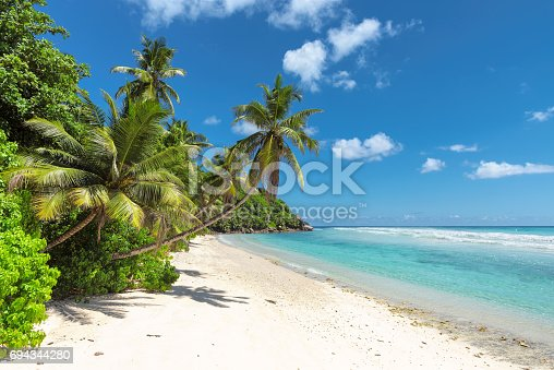 istock Untouched sandy beach and beautiful sea 694344280