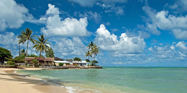 untouched sandy beach with palms trees and azure ocean - hawaii home stock photos and pictures