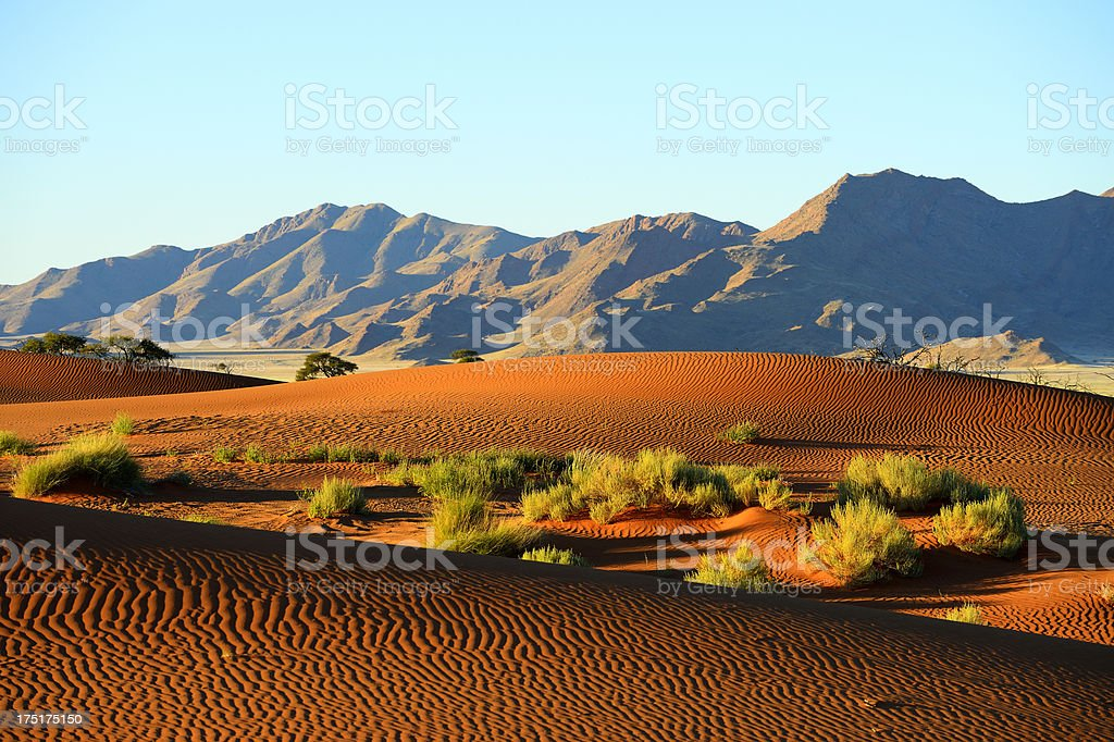 Untrodden dune ridges in front of mountain royalty-free stock photo