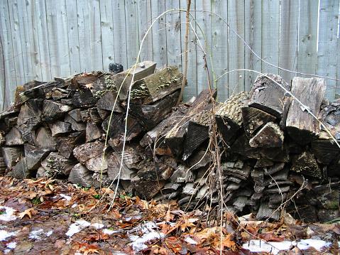 Unused firewood
