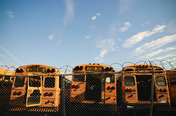 Unused Yellow School Buses stock photo