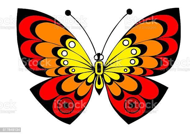 Unusual colorful butterfly in redyelloworange tonescolors picture id517849134?b=1&k=6&m=517849134&s=612x612&h=4pbftlmzxviskmwjh1bpcpuzwlvyvkv2gsvqoz akdw=