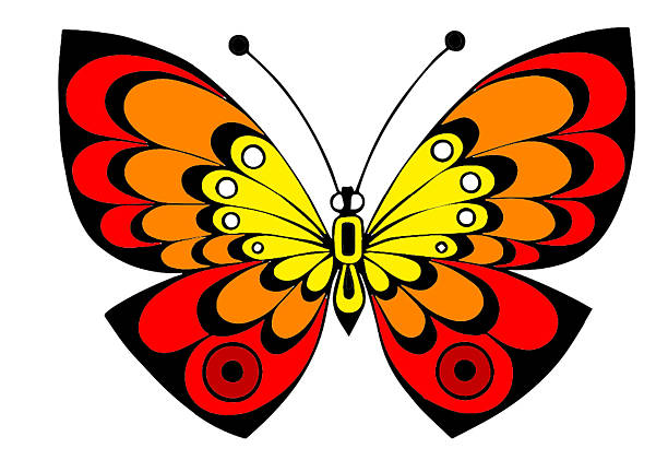 unusual colorful butterfly in red,yellow,orange tones,colors - vectors stock pictures, royalty-free photos & images