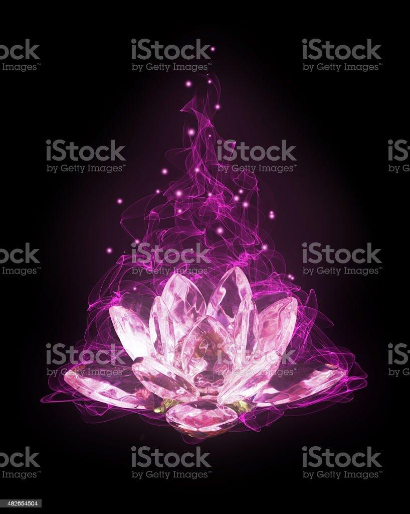 unusual lotus flower stock photo