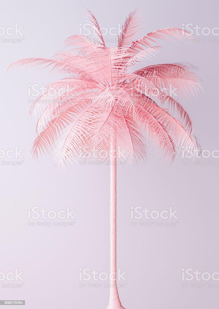 Unusual Pastel Pink Palm stock photo