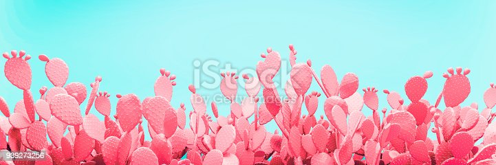 istock Unusual Pink Cactus Field On Turquoise Background 939273256