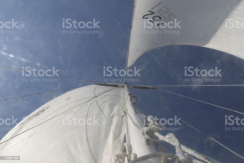 Up the Sails royalty-free stock photo