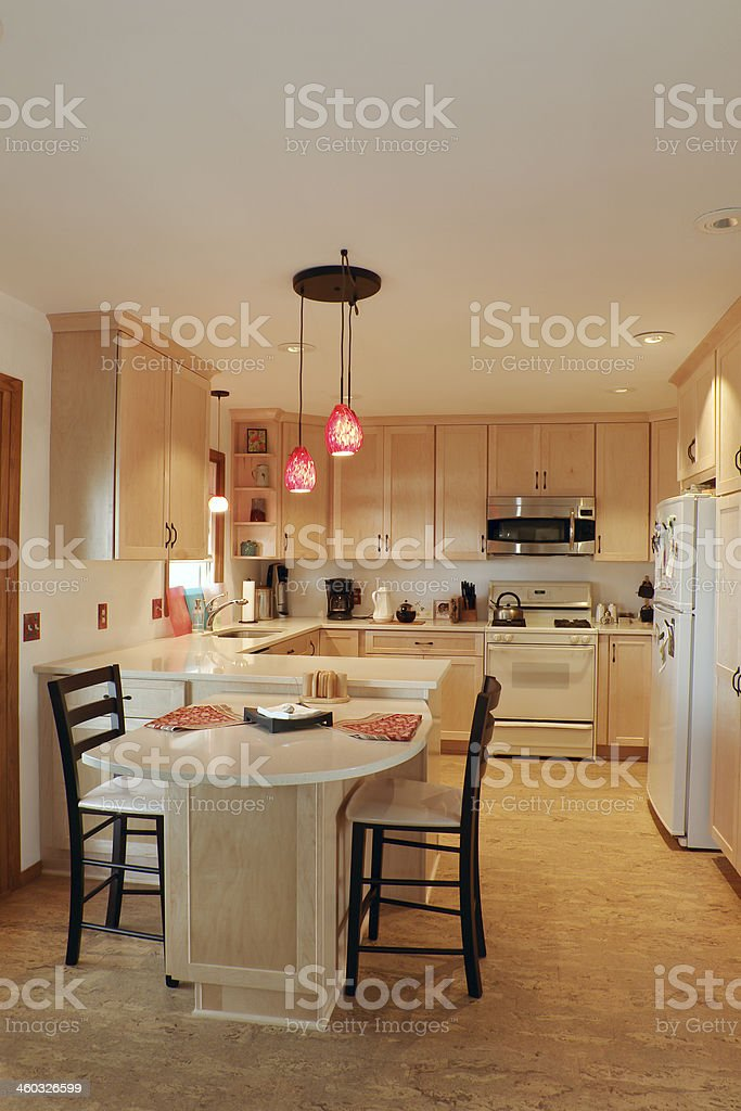 Updated Kitchen Interior royalty-free stock photo