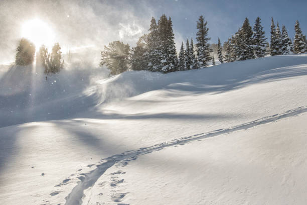 Uphill ski track on a windy day in the Tetons. stock photo
