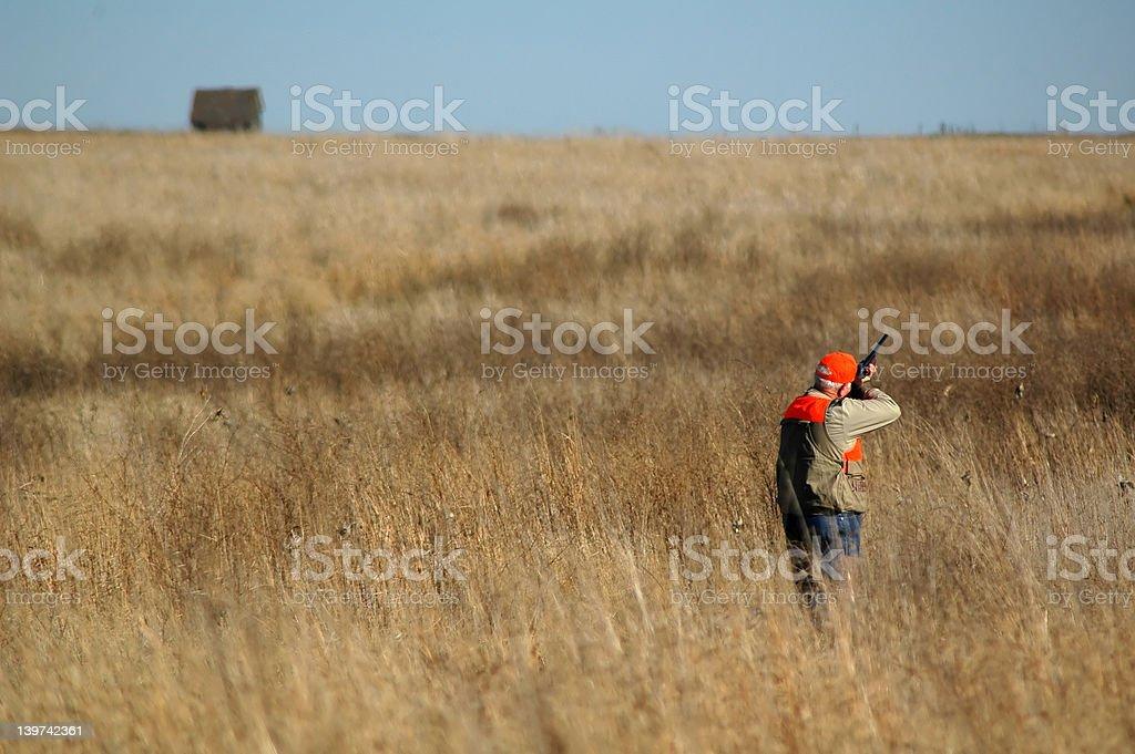 Upland Hunter 1 stock photo