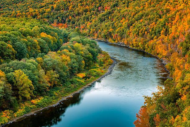 tige delaware river bend - rivière delaware photos et images de collection