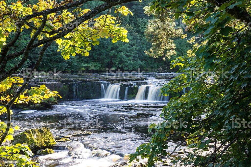 Upper falls at Aysgarth, North Yorkshire. stock photo