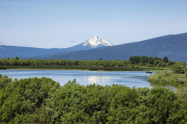 upper klamath national wildlife refuge - south stock pictures, royalty-free photos & images