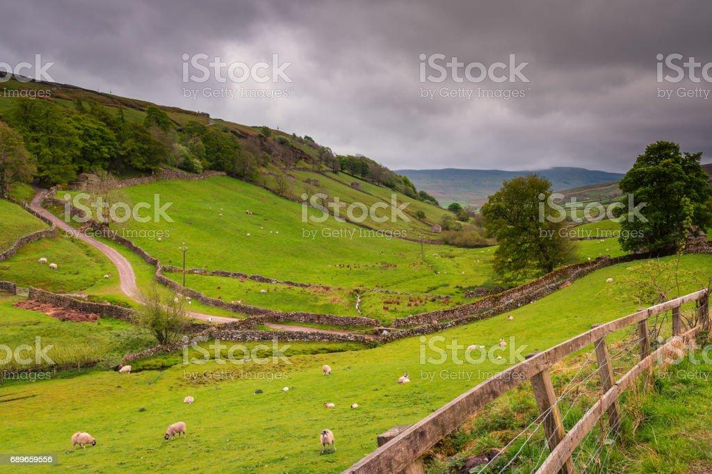 Upper Swaledale near Keld stock photo