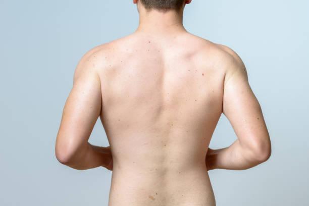 Upper torso of a fit muscular young man - foto stock