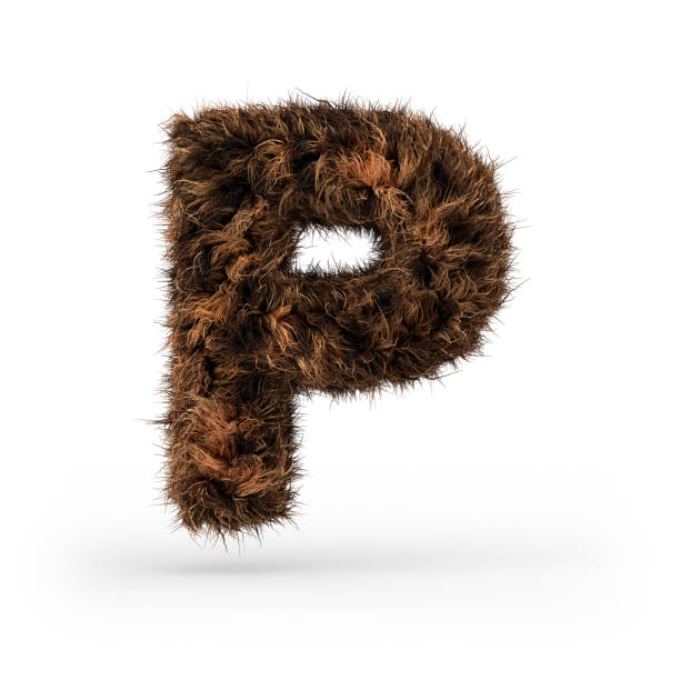 Uppercase fluffy and furry font. Letter P. 3D Uppercase fluffy and furry font made of fur texture for poster printing, branding, advertising. Letter P. 3D rendering letter p stock pictures, royalty-free photos & images