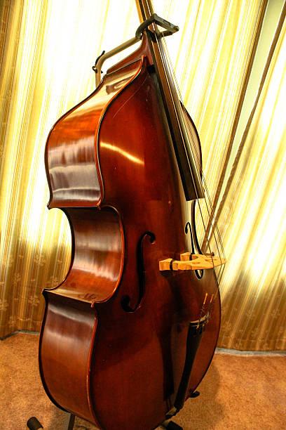 Upright Bass stock photo