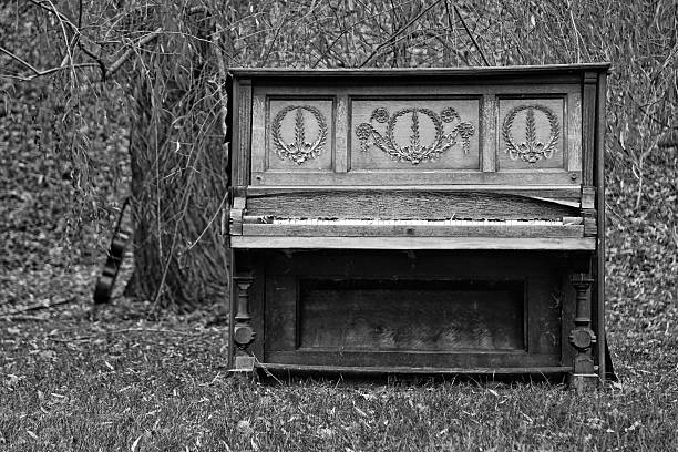 upright piano decomposing in nature / black and white - broken guitar stock photos and pictures
