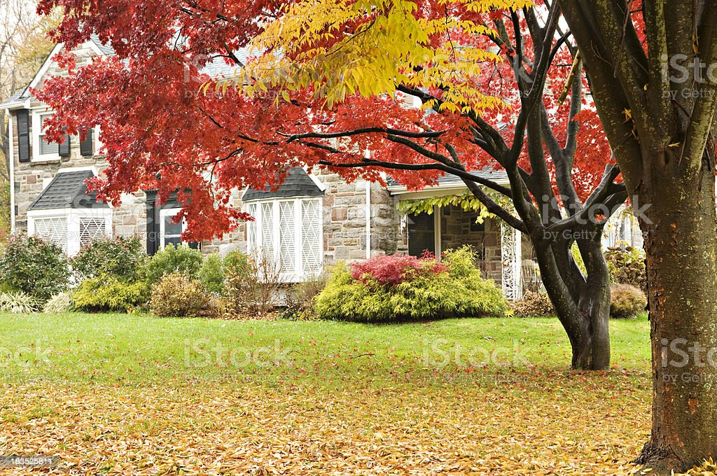 Upscale family house and front lawn in autumn stock photo