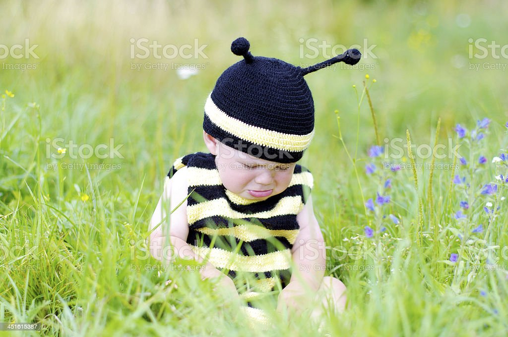 upset baby in bee costume on the meadow stock photo