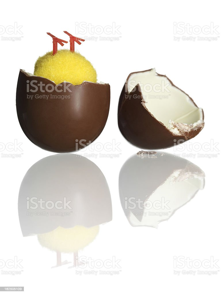 Upside down chick in chocolate egg stock photo