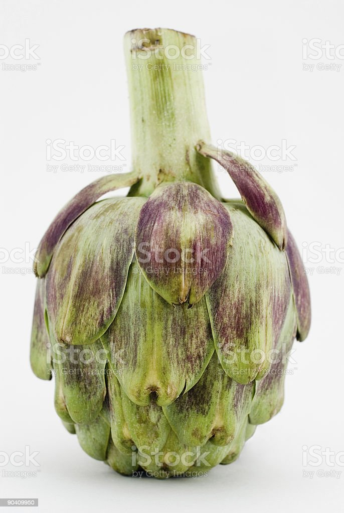 upside-down artichoke royalty-free stock photo