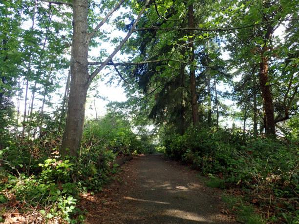 Upward Path up the Waterfront Trail stock photo