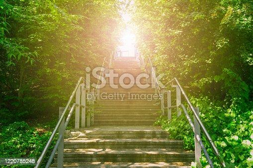 istock Upward stairs ascending to the brightness of sunlight 1220785248