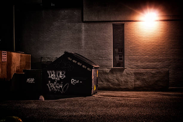 Urban Alley at Night A dirty, dark, shadowy and dangerous looking urban back-alley at night time with garbage dumpster. alley stock pictures, royalty-free photos & images