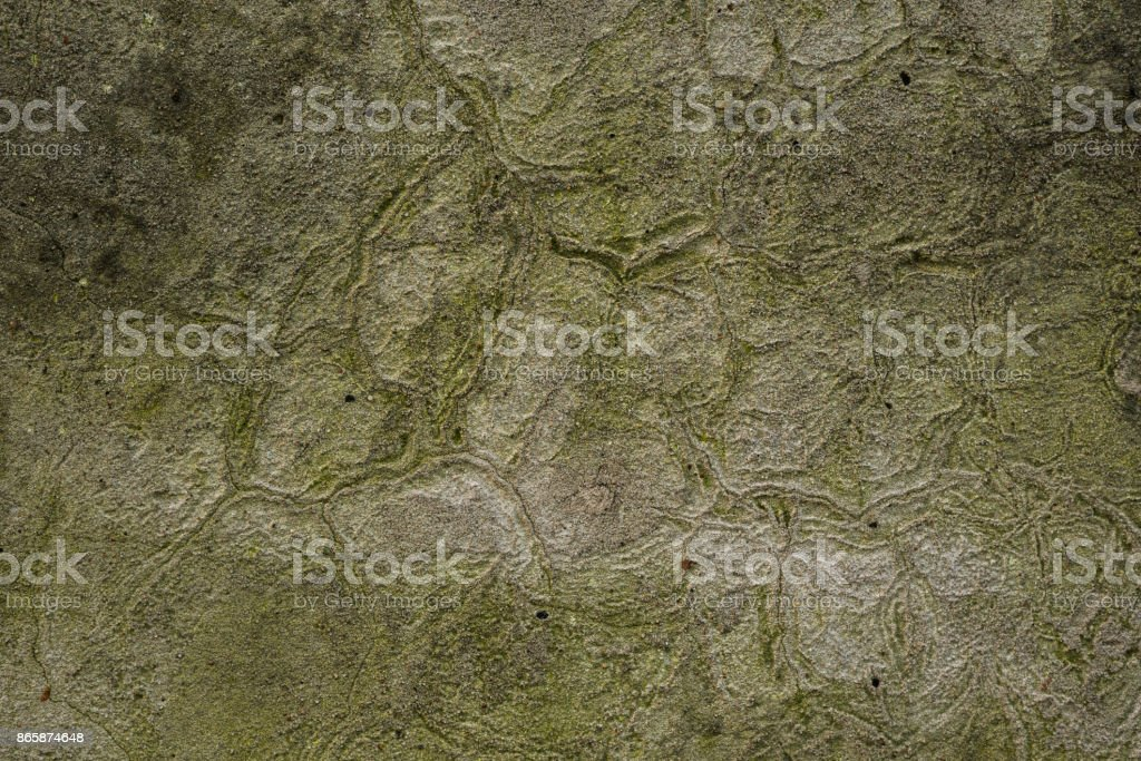 urban background of old green concrete wall texture stock photo