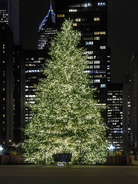 Urban celebration with lighted tree