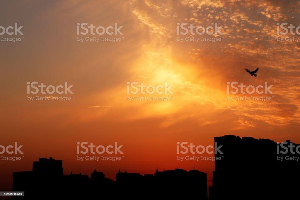 Silueta atardecer urbano - Foto de stock de Aire libre libre de derechos