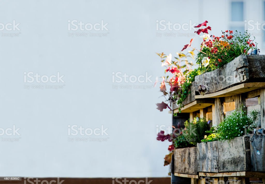 Urban Garden and Farming in the City in Summertime stock photo