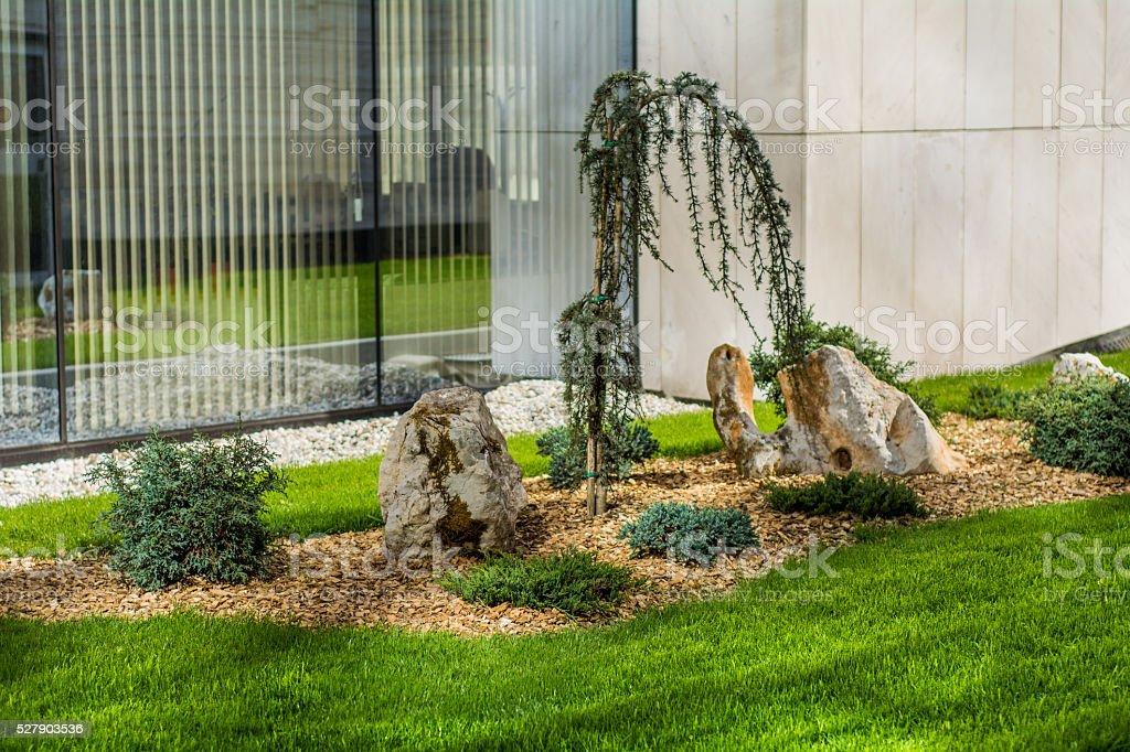 Urban garden stock photo