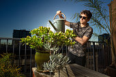 A young caucasian man watering succulents on a downtown balcony.