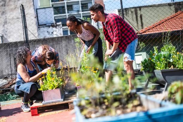 Urban Gardening Kurs – Foto