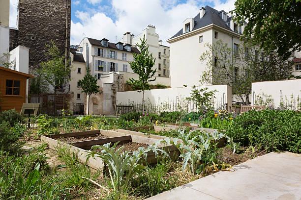 urban garten in paris, frankreich - urbaner garten stock-fotos und bilder