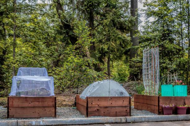 urban gardening erhöhte betten und pflanze protektoren - tipi bett stock-fotos und bilder