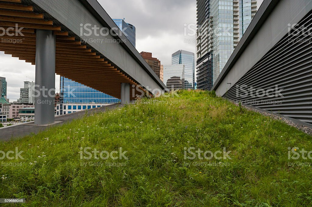 Urban Green Roof stock photo