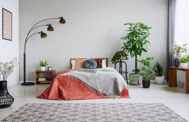 Urban jungle in bedroom with double bed, lamp and carpet, real photo with copy space one the wall Urban jungle in bedroom with double bed, lamp and carpet, real photo with copy space on the wall bedroom stock pictures, royalty-free photos & images