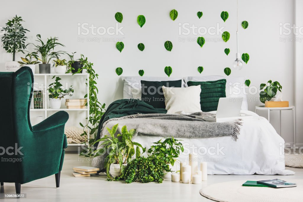 Urban Jungle In Cozy Emerald Green And White Bedroom Interior With King Size Bed Stock Photo Download Image Now Istock