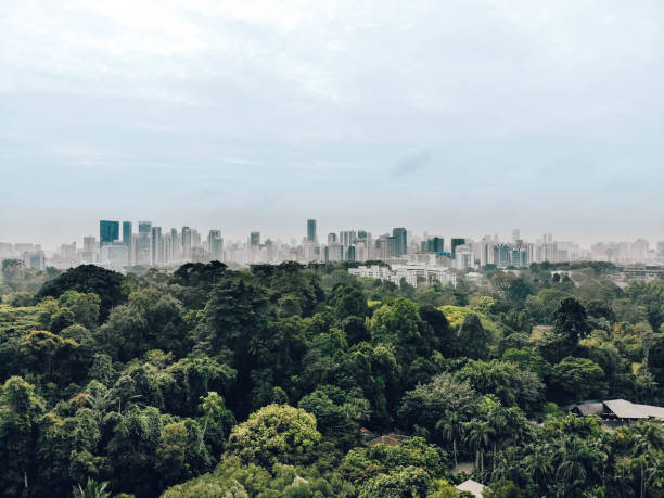 Urban jungle Drone shot of Botanic gardens with built up Singapore in the background. March 2018 singapore stock pictures, royalty-free photos & images
