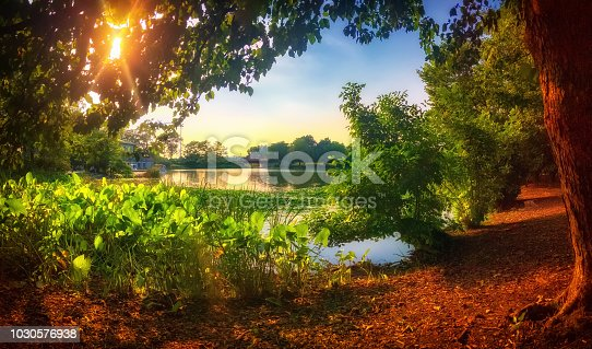 Sunset at the lagoon in Chicago's Humboldt Park. Warm, summer landscape. Panorama.