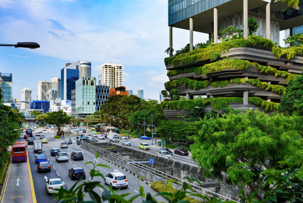 urban life in singapore - singapore stock photos and pictures