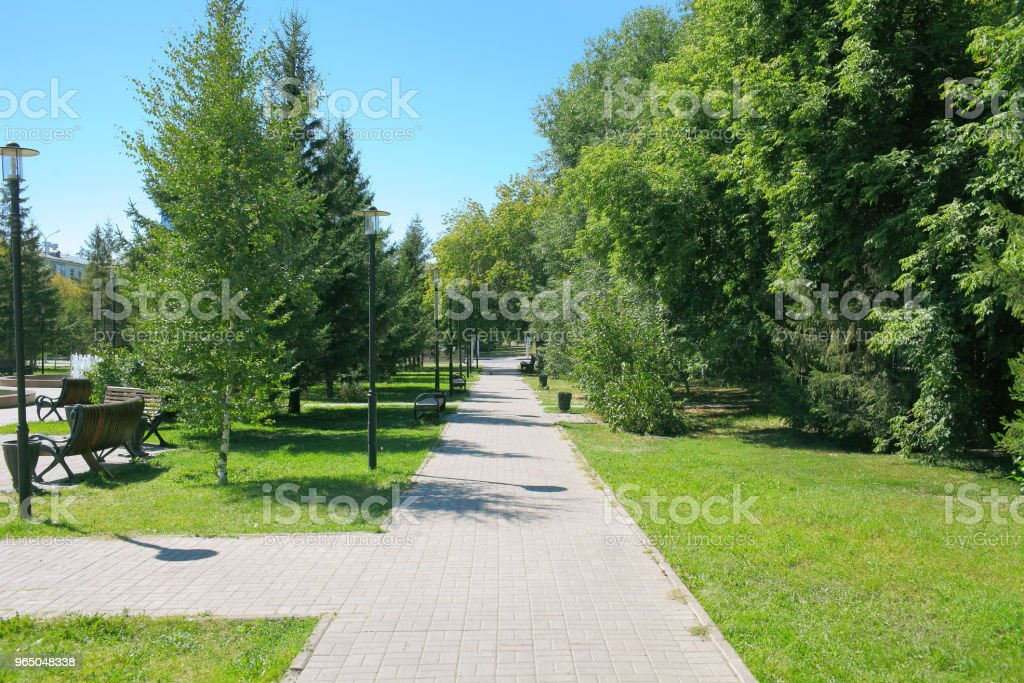 Urban park in a bright summer day zbiór zdjęć royalty-free